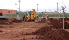 Obras nuevo arbolado (www.daimiel.es)